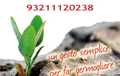 Le News di Mag Verona n. 137