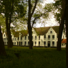 Il Cohousing per donne. I Beghinaggi moderni