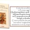 Presentazione del libro 'Europa delle città vicine'-     27 Ottobre Catania
