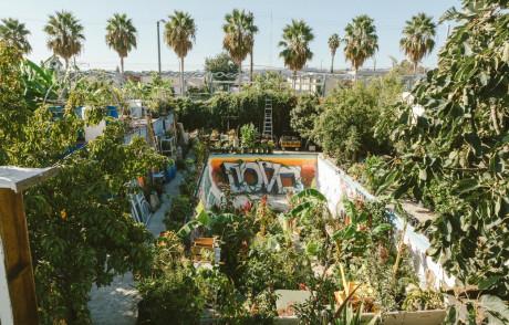"""Ron Finley, il giardiniere """"gangsta"""" che coltiva per educare il suo quartiere a Los Angeles"""