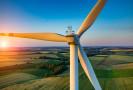 Un'opportunità formativa: lavorare nell'ambito della sostenibilità