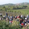 Nuove vite contadine – secondo incontro