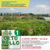 Le News di Mag Verona n. 95