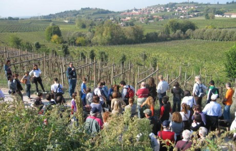 Mag d'Italia: una lettera contro le normative che imbrigliano