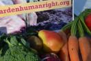 Come un orto può cambiare l'economia